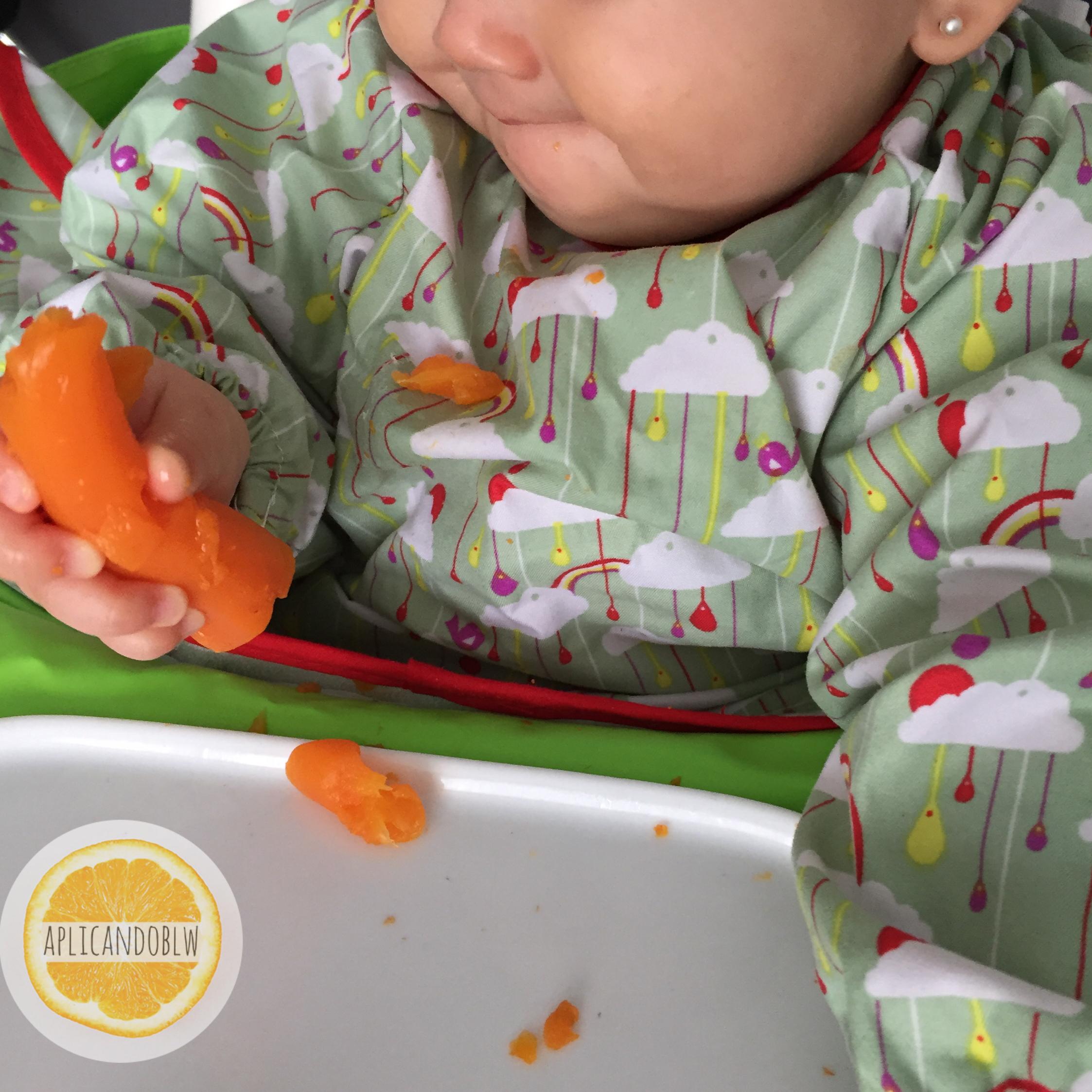 Dia 1 Zanahoria Cocida Aplicando Blw Las zanahorias son una raíz deliciosa y nutritiva. dia 1 zanahoria cocida aplicando blw