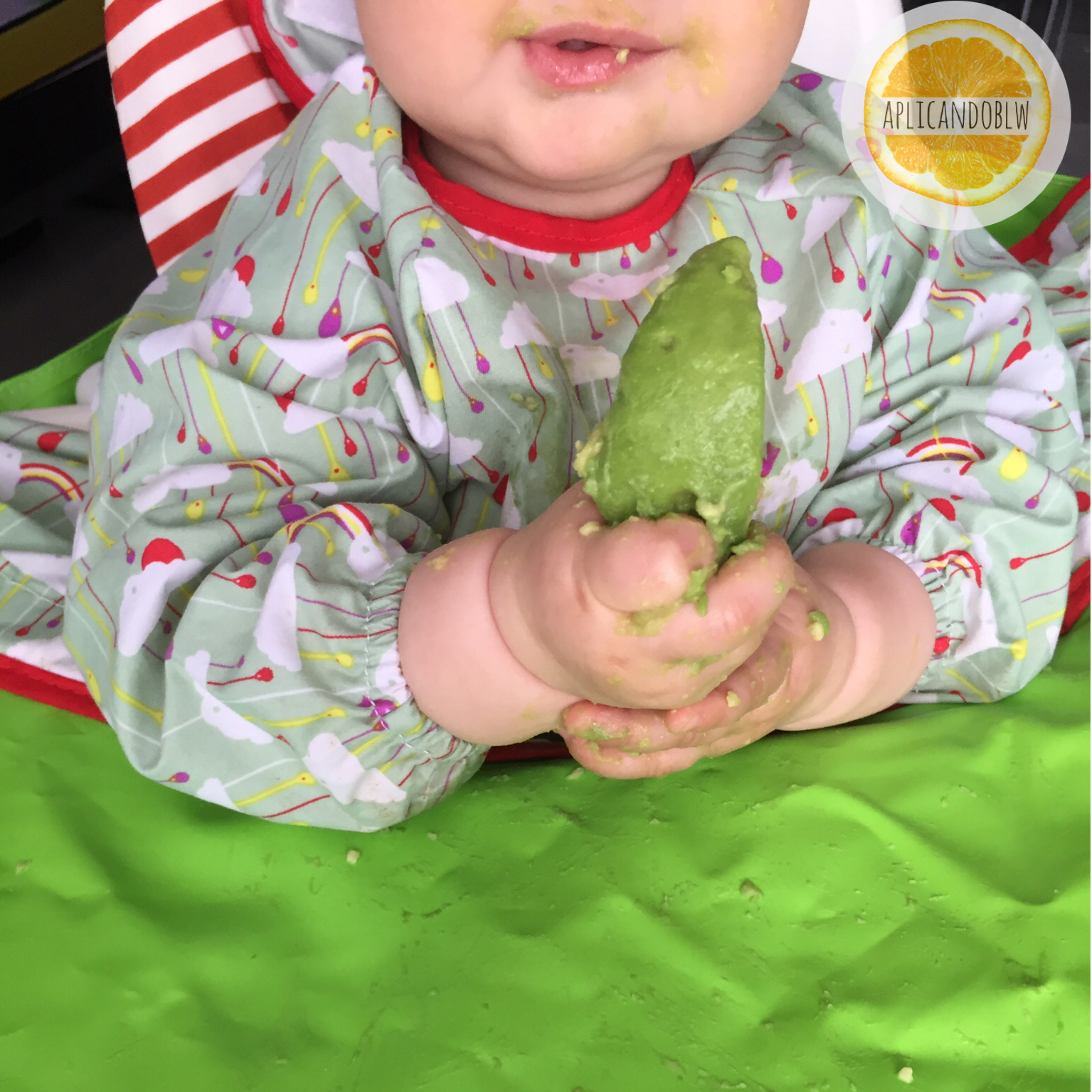 blw 6 meses - baby led weaning aguacate