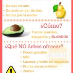 Infografía sobre Baby Led Weaning